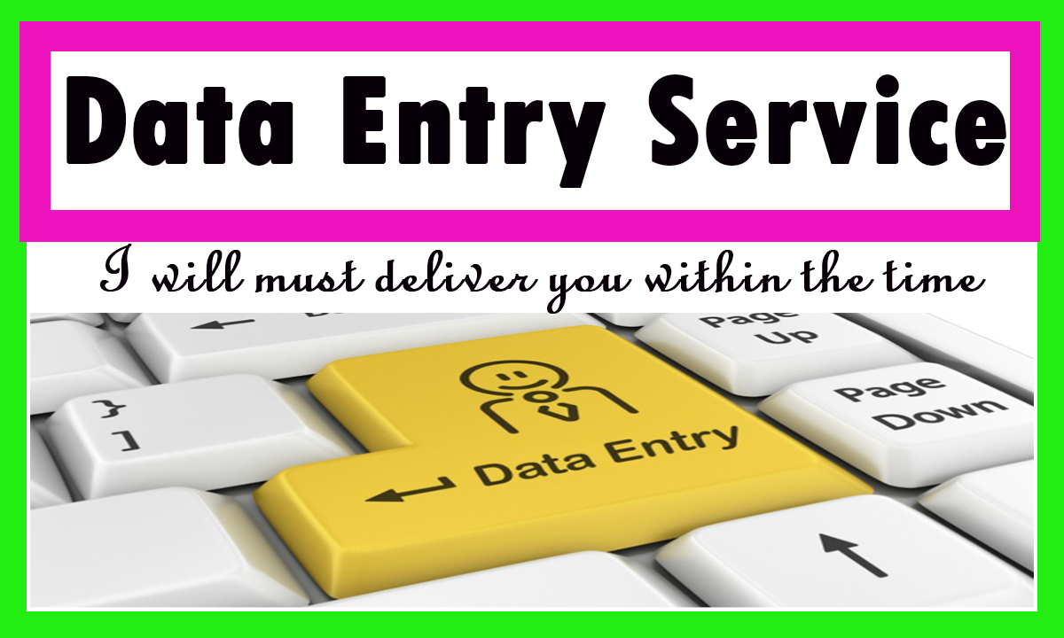 I Do Data Entry work of 500 entries within 24 hours