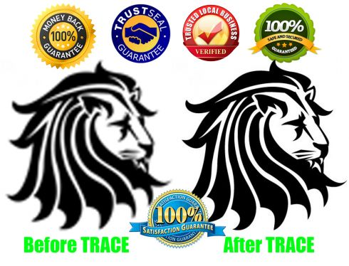 Vector Tracing Any Image Or Logo In 12hrs