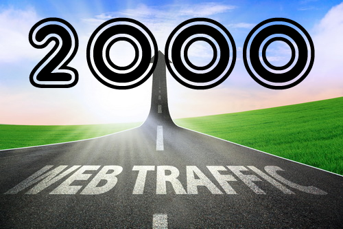 2000 real visits worldwide human traffic for website
