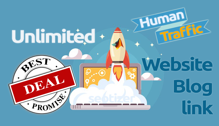 Unlimited Real Human Traffic on Website Upto 30 Days
