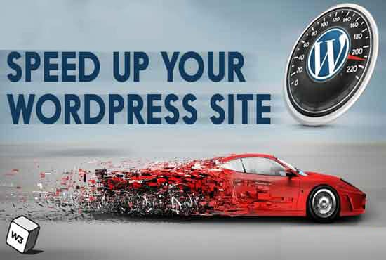 wordpress speed optimization to elevate google page speed