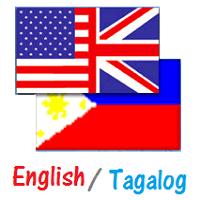 Professionally Translate English To Filipino/Tagalog Vise versa