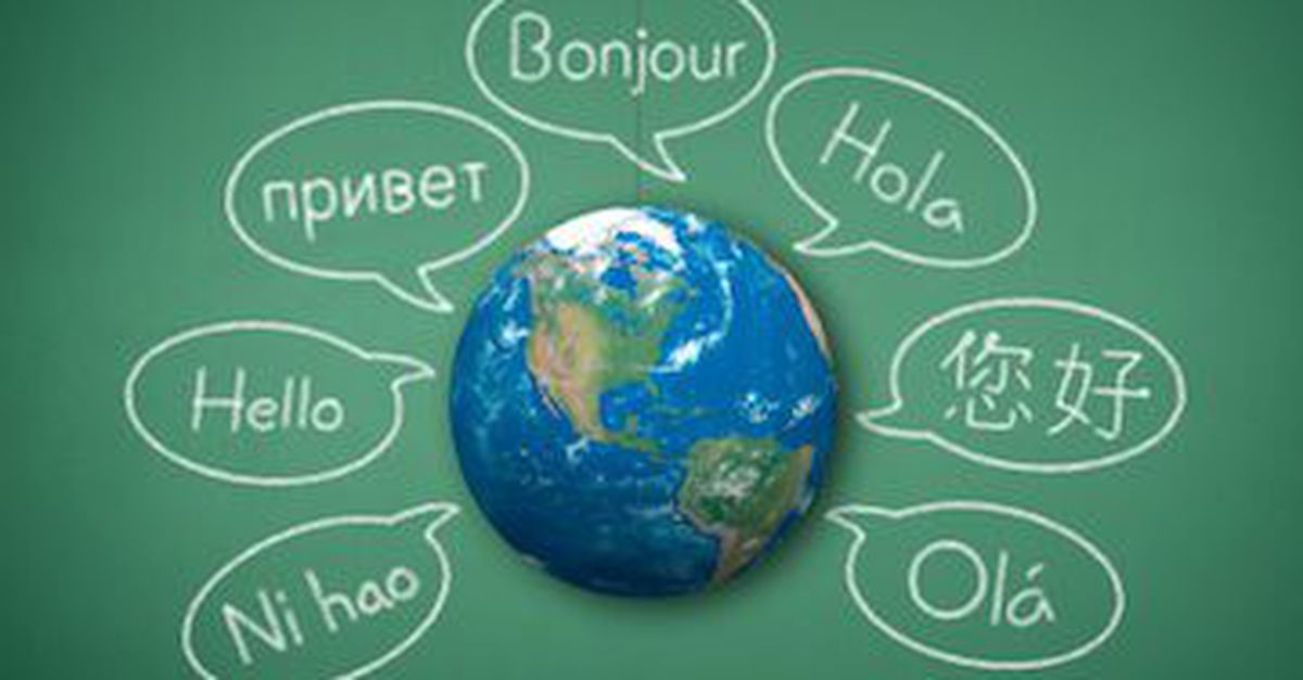 Translation from English to any Language 500 Words