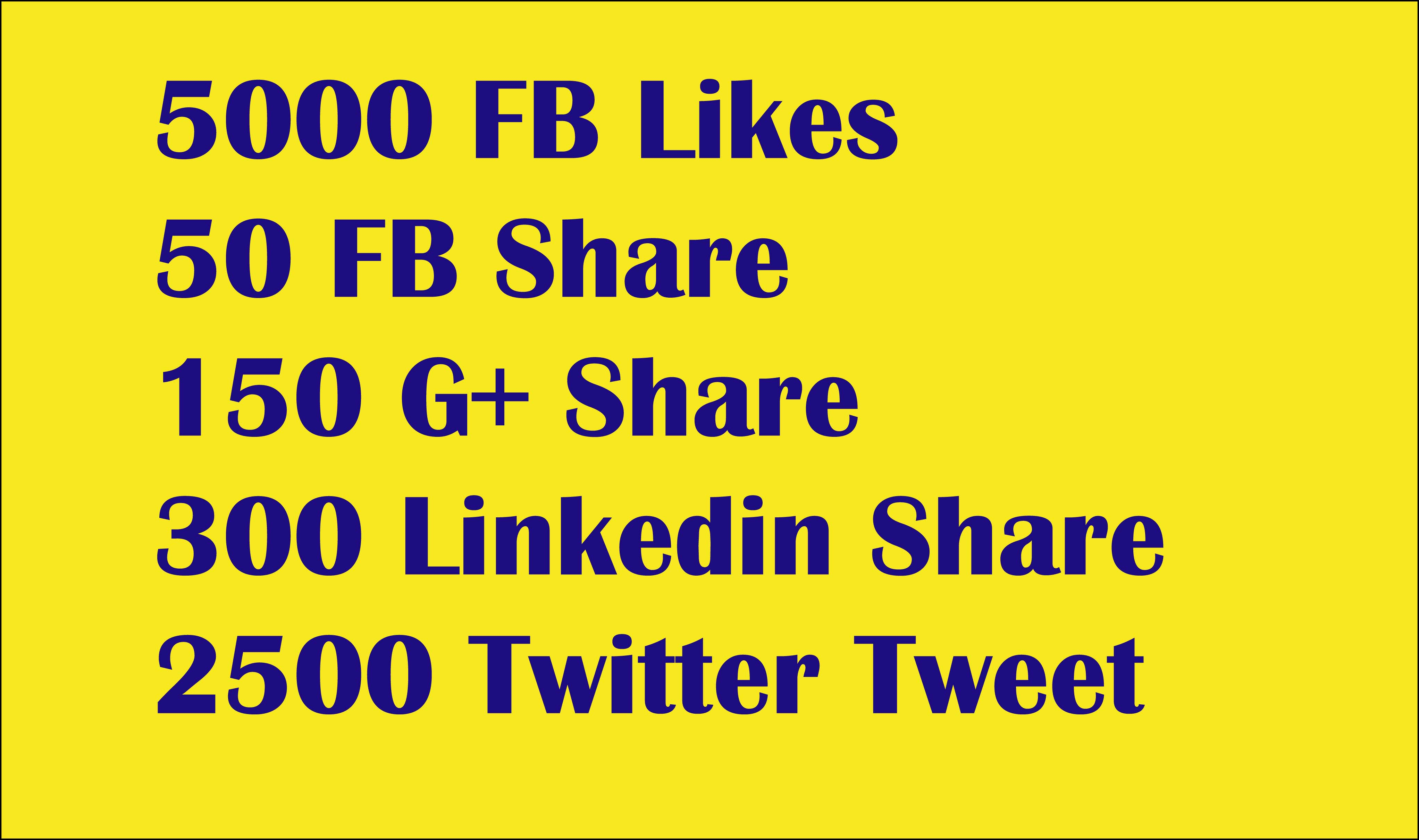 Drip Feed quality 8000 (PR-10 &9) social signals to boost your website