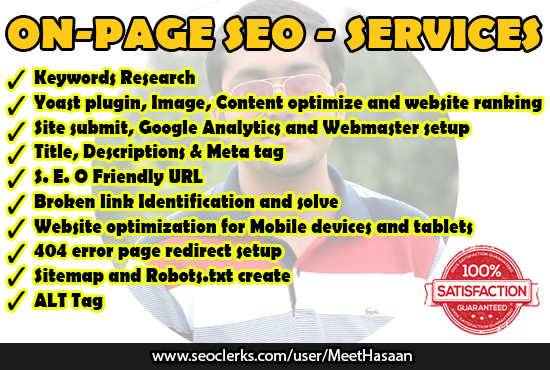 Will Do Best On Page SEO Setup For Your Website
