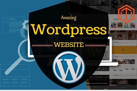 Create A Professional Wordpress Website, Blog, E-commerce store
