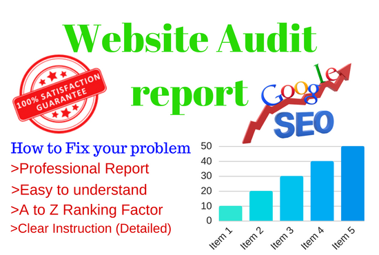 Do SEO friendly Website Audit and Provide a report with How to Fix those Errors