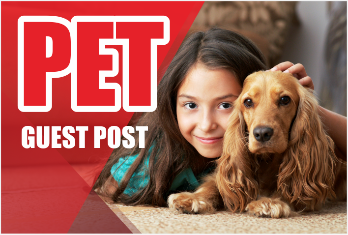 do guest post on PET or ANIMAL related blogs for $10 - SEOClerks
