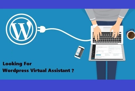 Wordpress Virtual Assistant - Blog Maintenance and Support