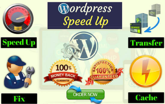I will do speed up wordpress website,  optimize wordpress Speed