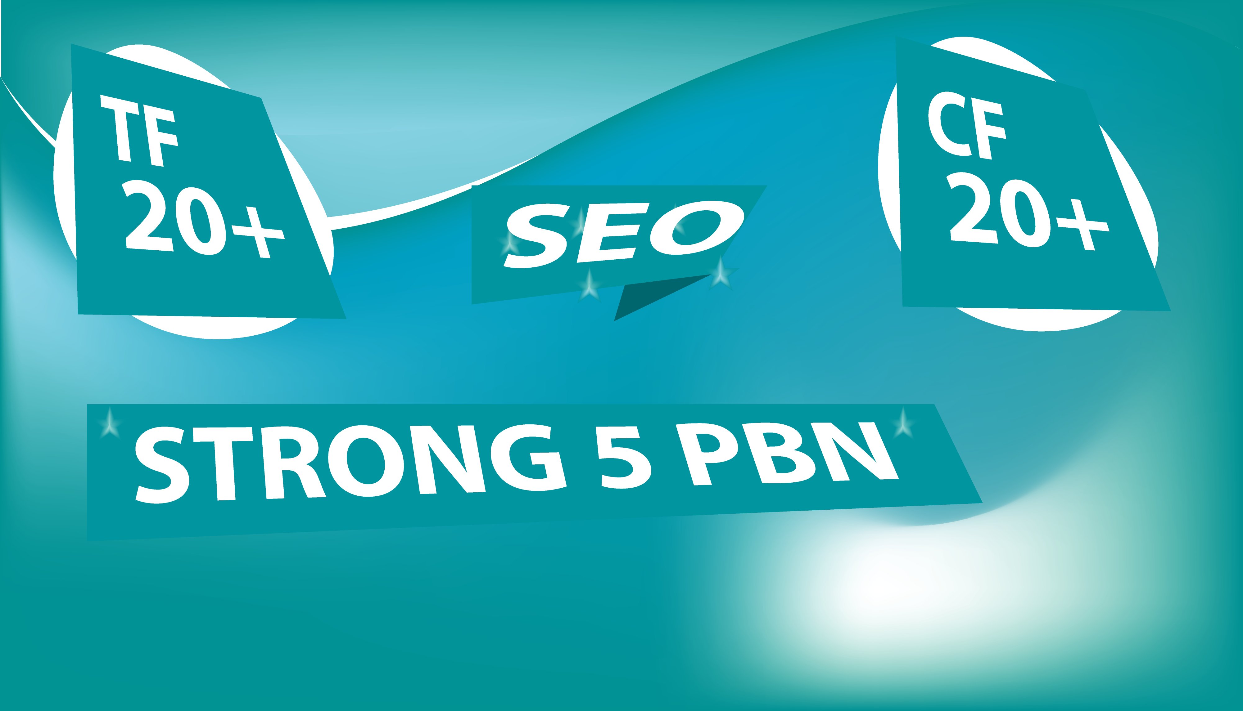 Build 5 High TF CF DA PA 20 to 30, Dofollow PBN Backlinks within 24 Hours