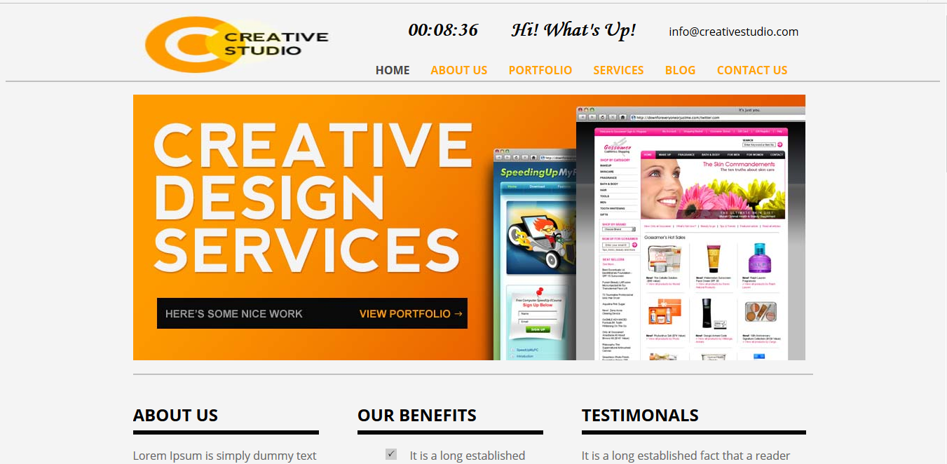I am a professional responsive web designer and wordpress expert.