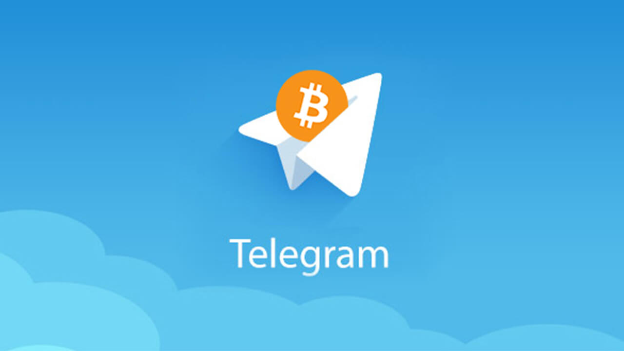 Private Telegram crypto-investors from 1000 group members ICO