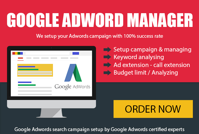 Create Google Adword Campaign and manage for 14 Days