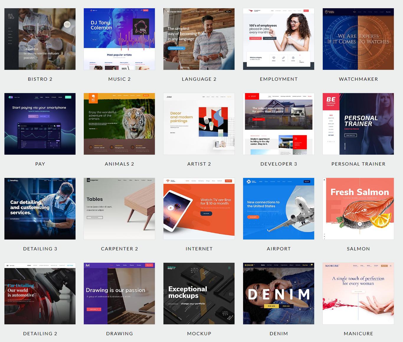 Build Fully Professional Wordpress Responsive Website