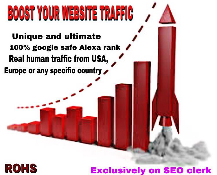 Get real human Traffic with Full complete SEO work to your Website/blogs for 30 days
