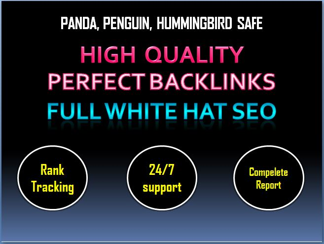 Help You Rank Higher In Google With My High Pr SEO Co...