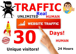 drive human visitors to any kind of your website 2000+ daily visitors for 30 days