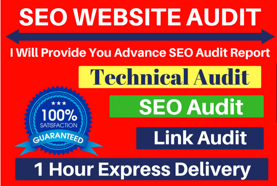 Do Advance Website Audit Report