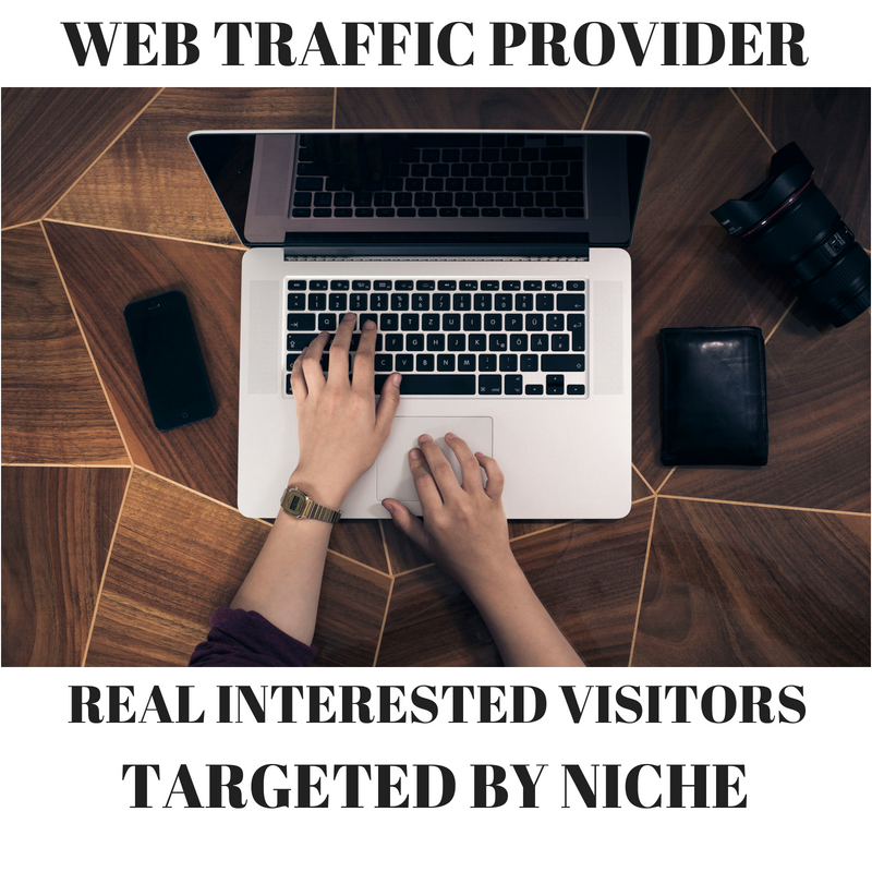 200+ website traffic everyday with 0% bounce rate for 1 month