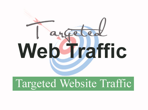 DRIVE 10M TARGETED Human Traffic To Your Website