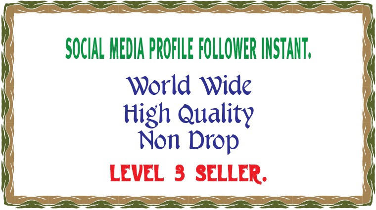 400+ High Quality profile follower Instant