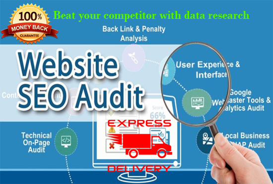do full seo audit report and competitor analysis within 12 hour