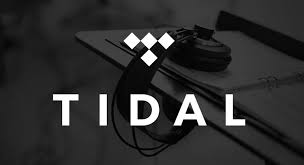 tidal a+ playlist add your song