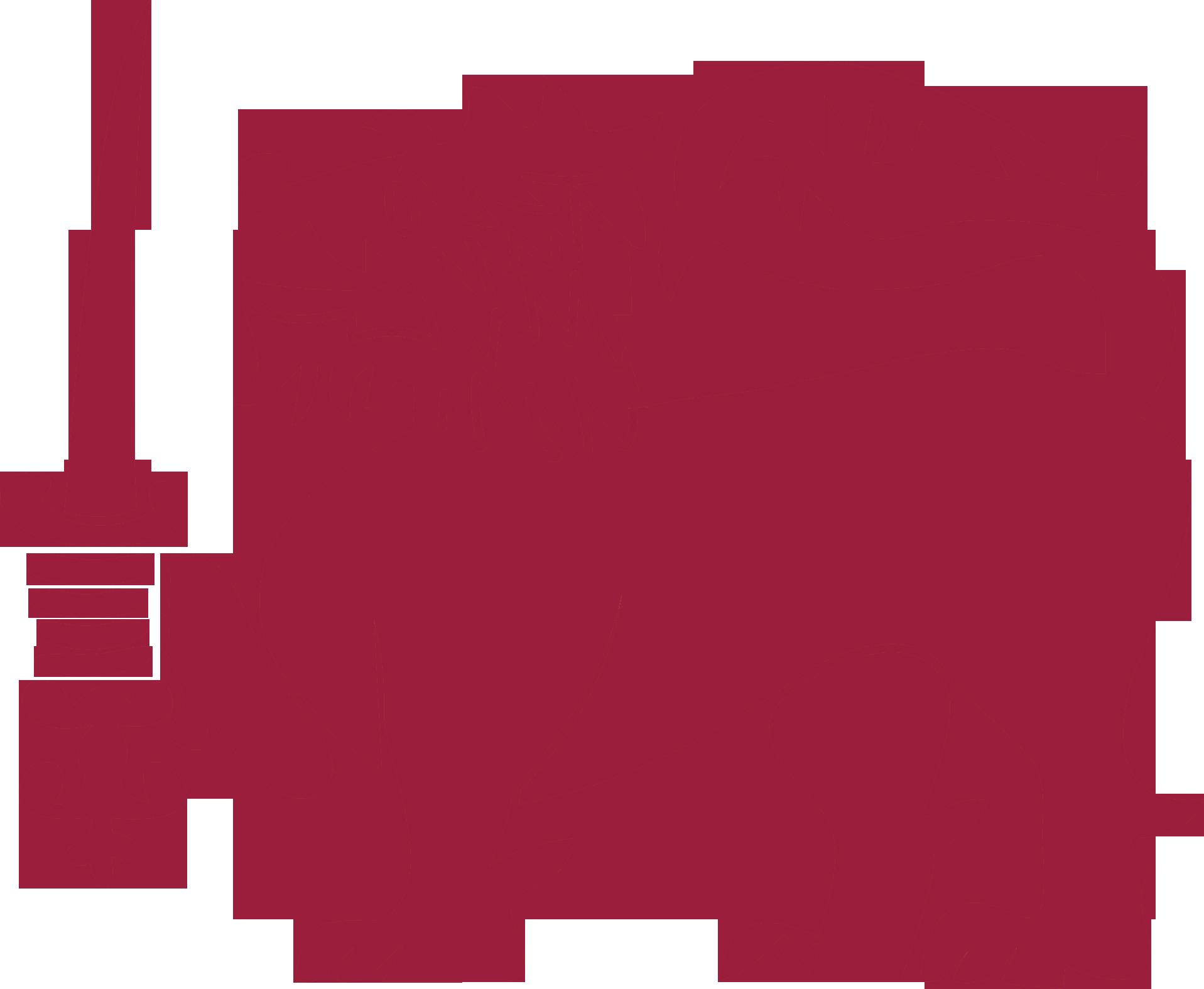 Sinhala Writing and Translation