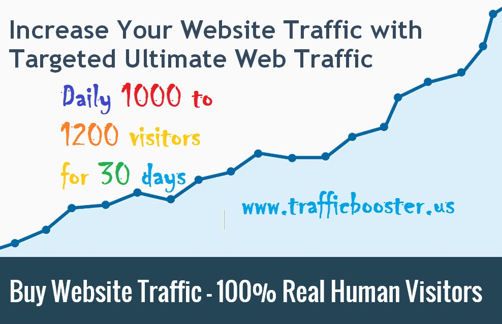 Daily 1000 to 1200 visitors for 30 days Website Traffic for 3