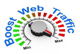 I Will Drive Organic Targeted Web Traffic