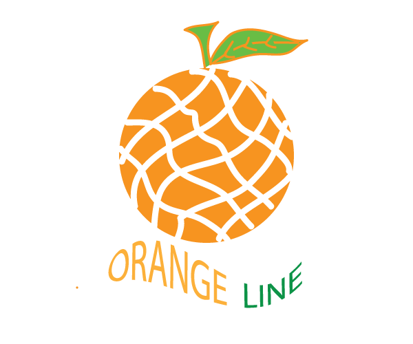logo designer, webdesigber, photo editing