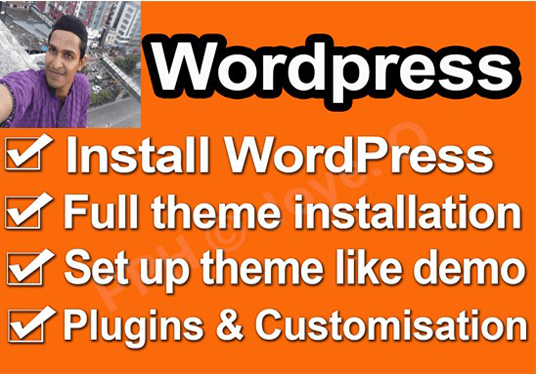 install wordpress, wordpress theme and setup like demo within 3 hours