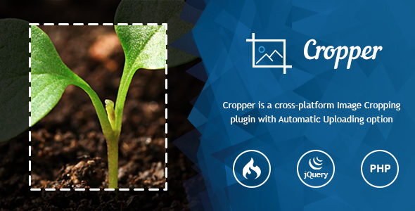 Ultra Image Cropper &ndash Plugin built on CorePHP and CodeIgniter