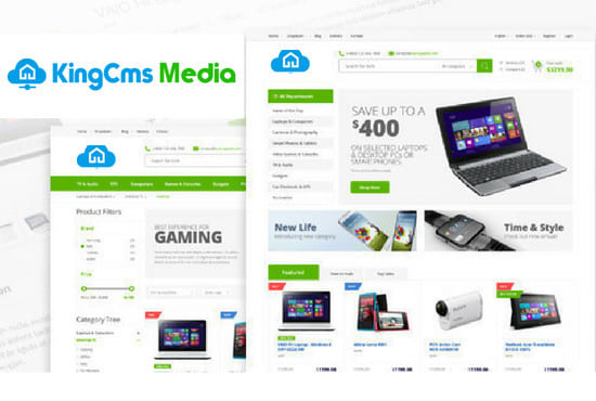Design Ecommerce Website In 24 Hours With Free Hosting