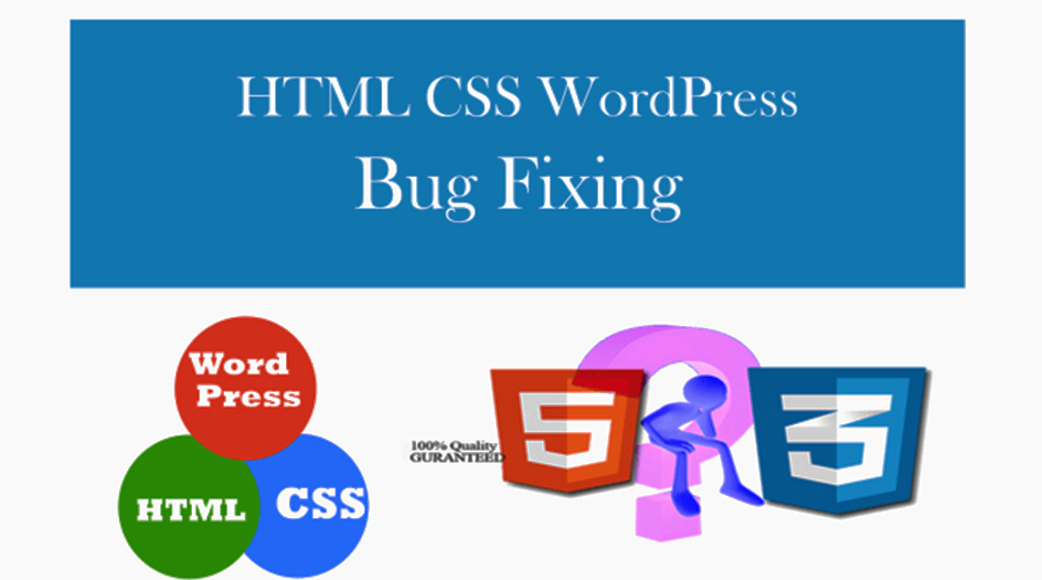 I will bug fixing and theme customization of wordpress