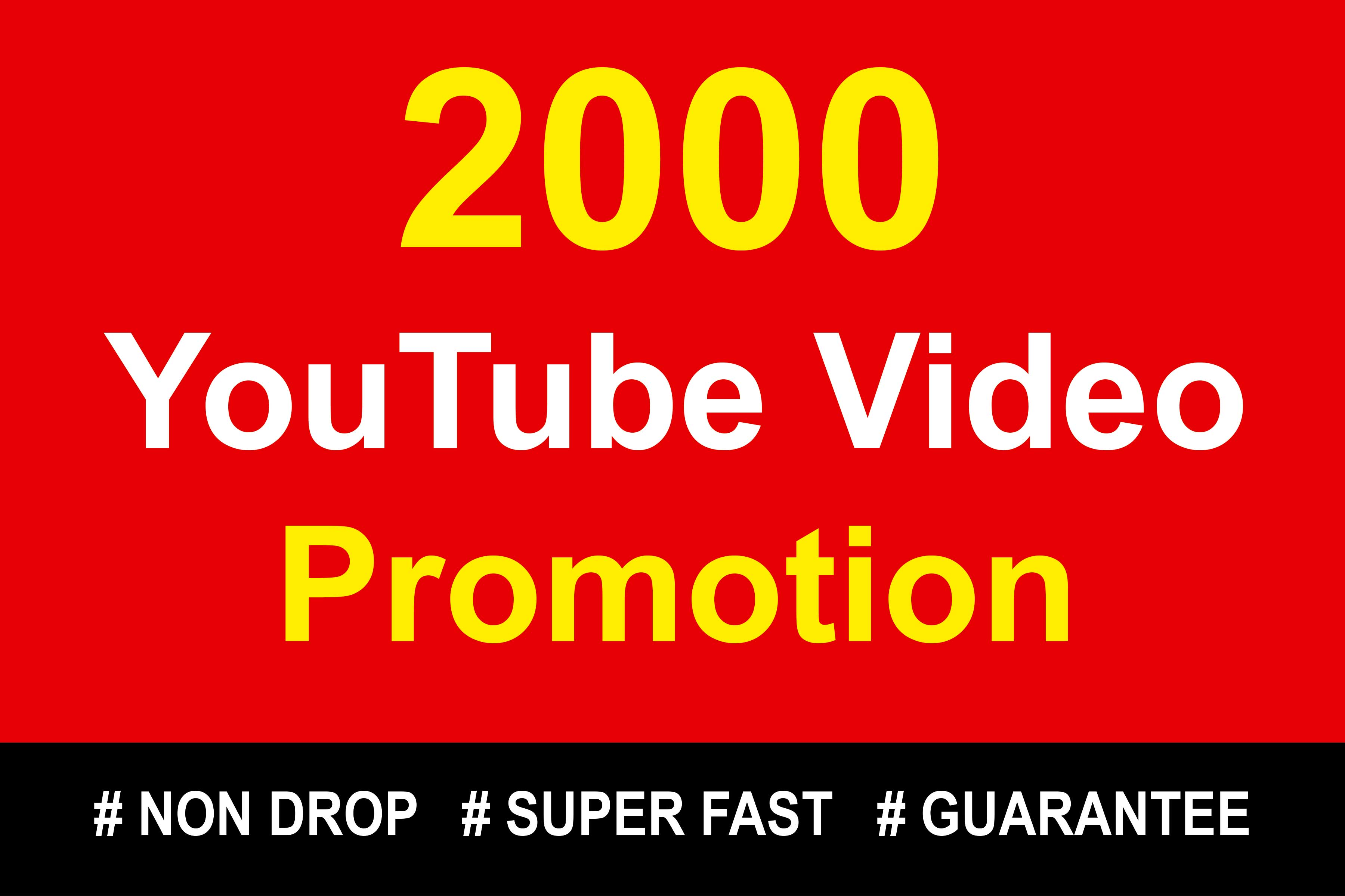 Organic High Quality YouTube Video Promotions High Speed