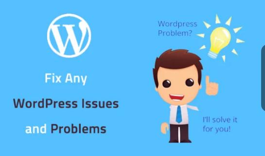 Fix Wordpress Website Problem