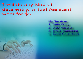 do data entry, excel and any kind of virtual assistant work