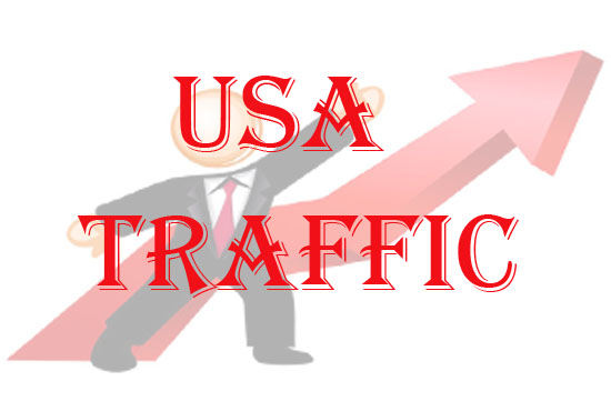 10,000 USA web site traffic