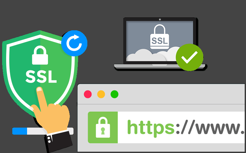 Install Free SSL Certificate For WordPress Or Any Website