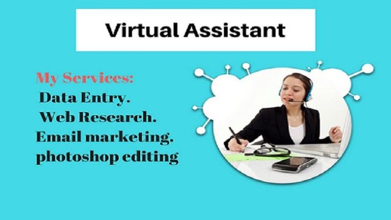 Expert Virtual Assistant