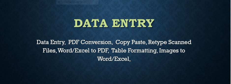Do any Type of Data Entry, Excel Data Entry,  PDF Conversion