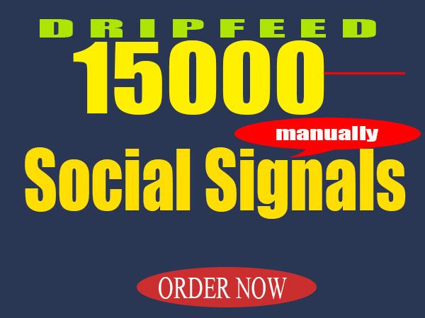 Create 15000 Manually Seo Social Signals 15 Days Drip Feed