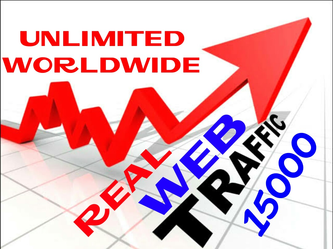 Provide 15000 + Real Human Web Traffic