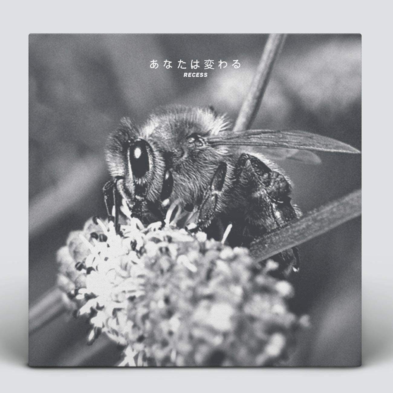 Design An Album Cover or single