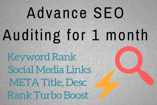 Do advance audit & SEO for 1 month