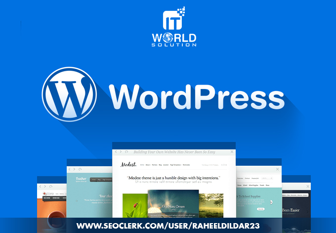 Build A Professional And Responsive Wordpress Website