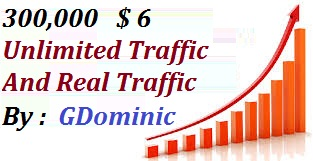 SKYROCKET 300,0000 Website Worldwide Traffic For network Marketing & Business Promotion Boost SEO Website Visitors & Share Bookmarks Improve Google Ranking Factors