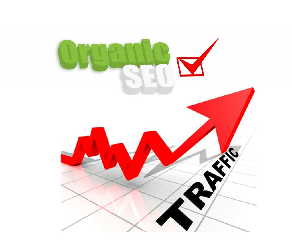 Drive 20,000 Organic Sales Traffic to your e-commerce store website